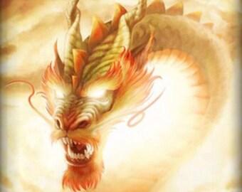 DragonsBlood  Incense 25 per bag w/ Crystals/Stones