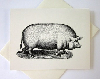 Pig Cards Set of 10 in White or Light Ivory with Matching Envelopes