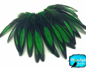 Laced Feathers, 1 Dozen - KELLY GREEN Laced Hen Cape Feather : 2021