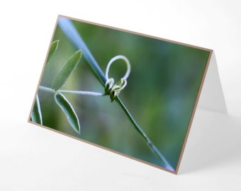 Green Hold On blank macro photography print card