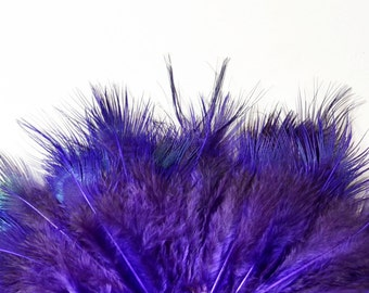 Ringneck Pheasant Strung Feathers, Rump Hackle - Dyed Purple (40-50pcs)