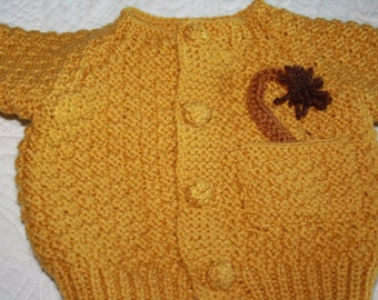Leon the Lion Sweater Set