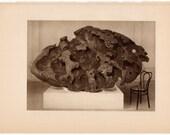 1934 METEORIC IRON the willamette meteoric iron original vintage print