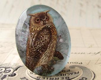 "Artisan crafted ""Woodland Owl"" 40x30 mm glass oval cabochon, 40x30mm 30x40mm, winter day, wisdom, light blue, brown, woodland bird"