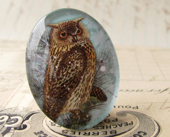 "Artisan crafted ""Woodland Owl"" 40x30 mm glass oval cabochon, 40x30mm 30x40mm, winter day, wisdom, light blue, brown, woodland bird"