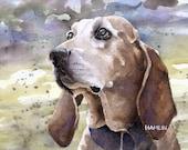 Coonhound (Pumpkin) - Open edition print of an original watercolor (fits 11x14 frame)