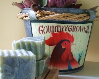 Foot & Hand Vegan All Natural Exfoliating Sand Soap
