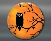 "3.5"" halloween owl fridge magnet, kitchen decor, halloween decor,  owl on branch magnet, large magnet  MA-1335"
