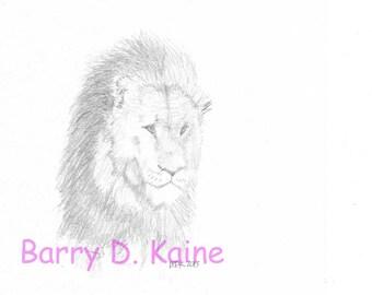 Male Lion portrait 813A print