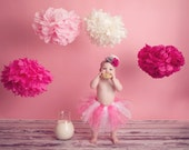 Set of Assorted Poms 3  Medium and 2 small Tissue Paper Pom Poms for Weddings - Birthdays Parties Decorations and more