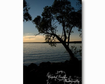 Sunset Silhouette Photography Tree Lake Beach Decor Black Blue Orange Wall Decor Tree, Nature Themed Wall Print, Home Staging Accent