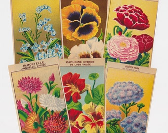 Flower Seed Packet Labels 72 vintage French botanical prints for wall art 1920s colorful antique lithographs