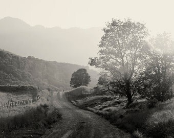 Black and White Country Summer photograph, Black and White Landscape