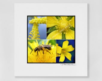 """For the love of yellow, a 3x3"""" photographic print in a 5x5"""" white, acid free black core mat, frames available"""