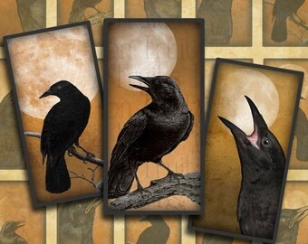 """Moonlit Crows on Orange digital collage sheet- 1"""" x 2"""" domino tile images-- Instant Download"""