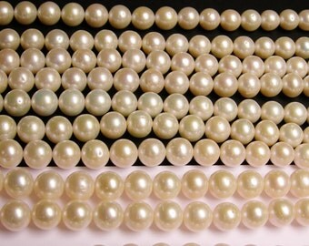 Fresh water Pearls 11mm-12mm - full strand - 38 beads/pearl - lustrous classic white