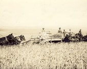 Farm Scene With THRESHING MACHINE and HORSES Photo Postcard 1915 Condon Oregon