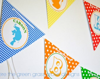 Circus Party Banner (Bunting)