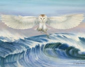 Barn Owl Fishing in Ocean, print of Original Watercolor