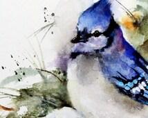 BLUE Jay Winter Watercolor Print by Dean Crouser