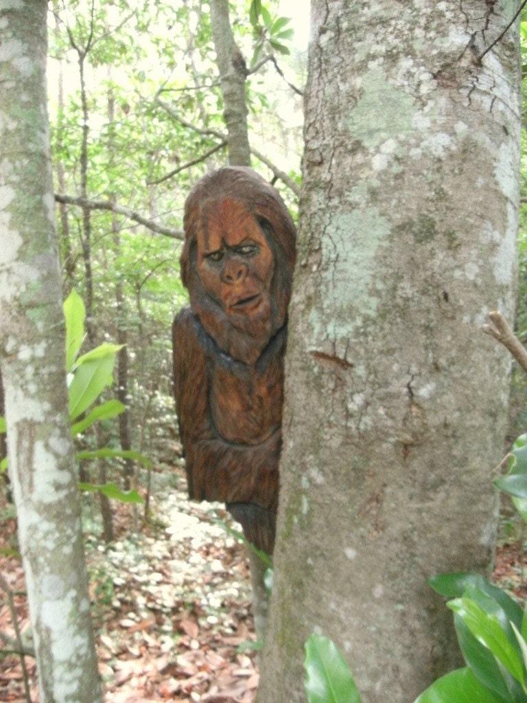 Sasquatch Carving 30 X 16 Bigfoot Peeking Around