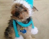 Turquoise Tube Scarf  and dog hat