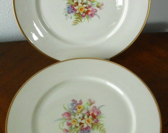 Warwick China, USA Three Dinner Plates, Floral Motif, Great Shape