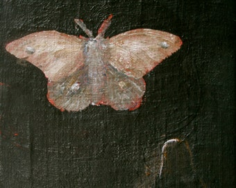 Night moth, print of original painting