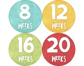 Pregnancy Stickers, Pregnancy Announcement, Weekly Stickers, Belly Stickers, Pregnancy Photo Prop, Belly Bump Stickers, Primary (N008-P)