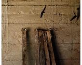 Photograph, old barn in Virginia, barn swallows, Birds of a Feather, fine art print
