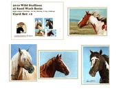 ACEO Set 1 Collector Cards 2010 Stallions of Sand Wash Basin Prints llmartin