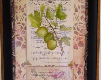 Gooseberry Botanical Collage