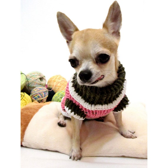 strawberry chihuahua strawberry shortcake chien chandails teacup chihuahua 8230