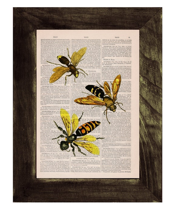 Summer Sale Queen and Bees Print on Dictionary Book page - Bees and honey Art on Upcycled Dictionary Book Art Home Decor BFL114