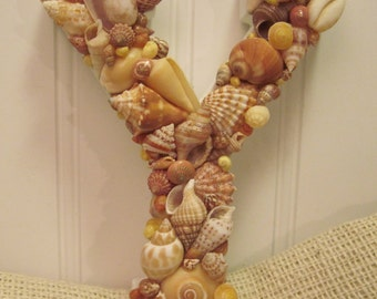Caribbean Colors Seashell Letter Capital Y