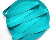 "1"" Turquoise Stretch Elastic Band"