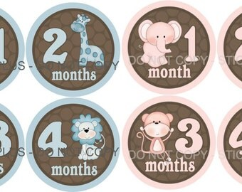 FREE NB Gift Twin Set 2 Sets Baby Month Stickers  Girl and Boy Jungle Animals Pink Blue Brown Dots Photo Prop Milestone Stickers