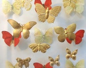Butterfly Collector (9 pc)