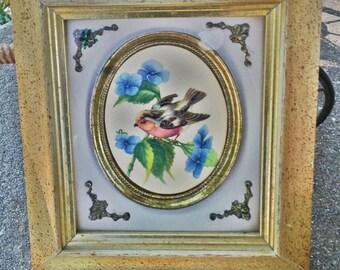 Little Wren Vintage Framed print
