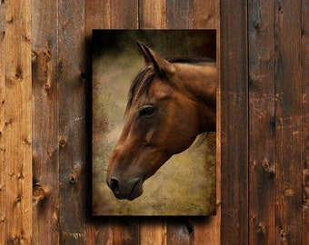 rustic horse horse decor brown horse decor horse art horse photography - Horse Decor