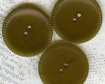3 Vintage Olive Green Celluloid Wafer Disc Sewing Buttons 1-1/8 inch 28mm