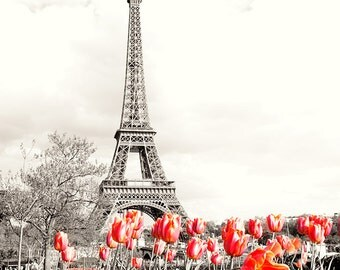 Photograph print - Paris Eiffel Tower Red Flowers, Black and White
