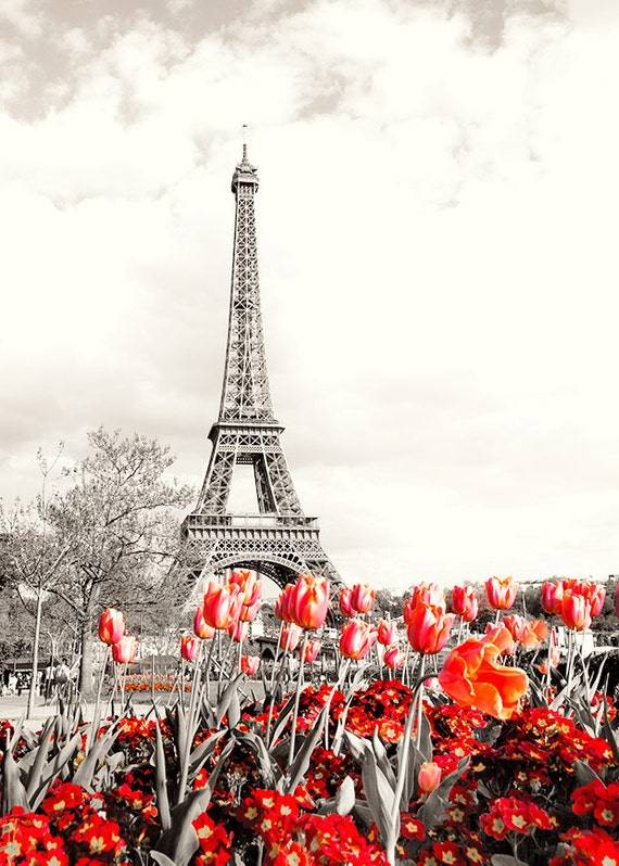 Photograph print paris eiffel tower red flowers black and for Eiffel tower mural black and white