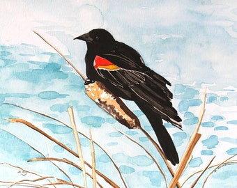 Red Winged Blackbird - Original Watercolor Painting - Home Decor - Not a Print
