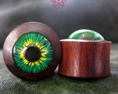 1/2 Wood Ear Plugs, Green & Yellow Eyes, Ear Gauges, Ear Plugs, Glass Gauges, Green Eyes, Gauged Piercings, Wooden Plugs, Pierced Eye Design