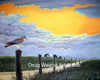 American Kestral Art Print, Birds, Wildlife, Nature, Acrylic, Fine Art Print, Animal, 11 x 14