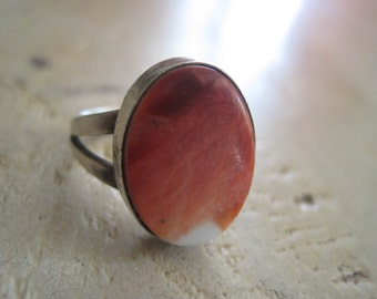 Spiny oyster ring size 6
