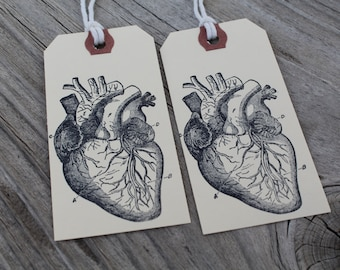 Set Of 10 Anatomical Heart Hand Stamped Tags