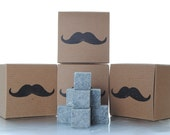 MOVEMBER Whiskey Stones - The Gift that Gives