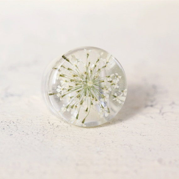 Real Queen Anne Lace Ring - Real White Flower - Pressed Flower Jewelry - Resin Ring